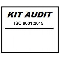 Kit audit interno ISO 9001:2015